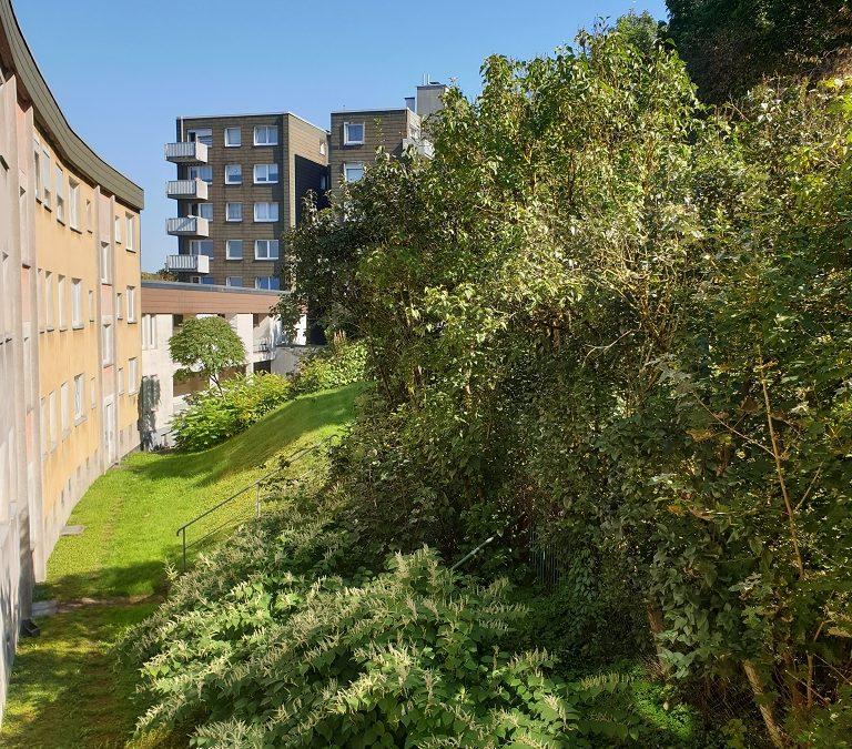 4 Zi.-Wohnung 89m² (116/0012904) 8.OG li. 2, mit Balkon und Aufzug